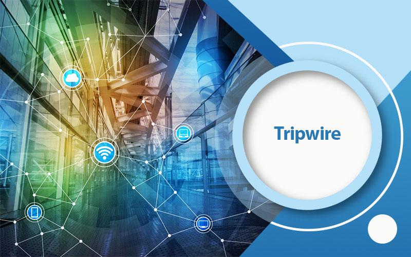 دوره آموزشی Tripwire