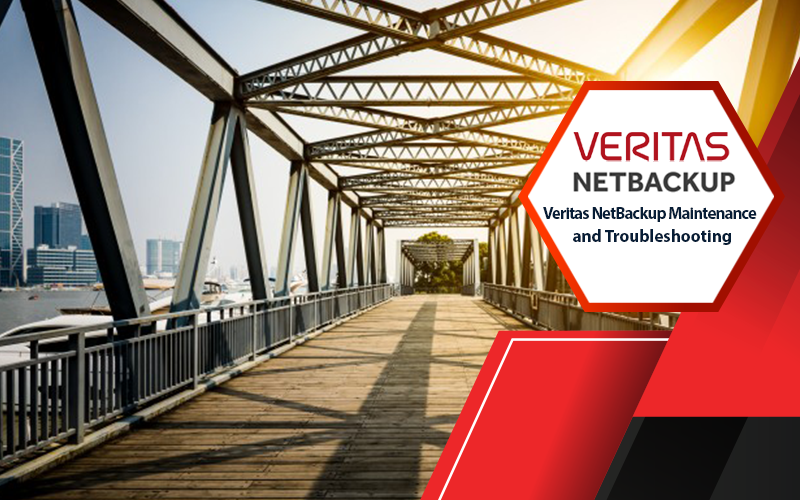 دوره Veritas NetBackup Maintenance and Troubleshooting