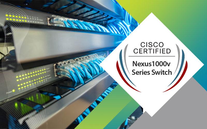 دوره Nexus 1000v Series Switch