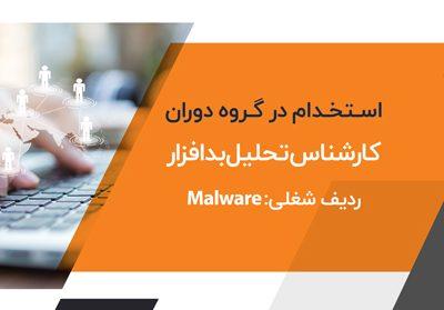 malware analysis expert